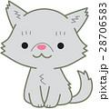 ペルシャ猫 猫 お座りのイラスト 28706583