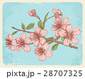 Postcard with sakura 28707325