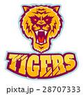 タイガー トラ 虎のイラスト 28707333