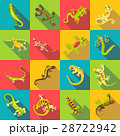 Different lizard icons set, flat style 28722942