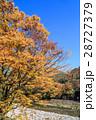 秋の世界遺産 白川郷 28727379