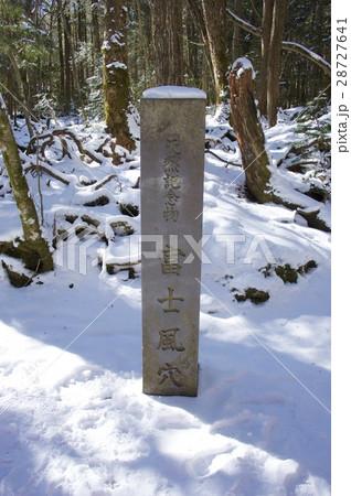 冬の青木ヶ原樹海〜富士風穴 28727641