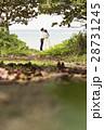 沖縄 28731245