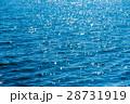 海面 海 水面の写真 28731919