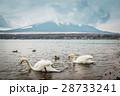 鳥 湖 山の写真 28733241