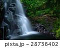 赤目四十八滝 滝 夏の写真 28736402