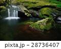 赤目四十八滝 滝 夏の写真 28736407