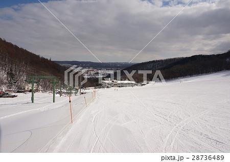 札幌藻岩山スキー場ファミリーゲレンデ 28736489