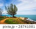 海 タイ タイ国の写真 28741081