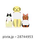 犬と猫の小グループ メッセージ 28744953