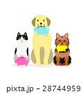 犬と猫の小グループ 貯金箱 28744959