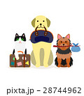 犬と猫の小グループ 旅行 28744962