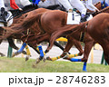 競馬 競馬イメージ ギャンブルの写真 28746283