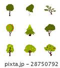 品種 種類 木のイラスト 28750792