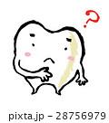 歯 28756979