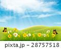 自然 春 泉のイラスト 28757518