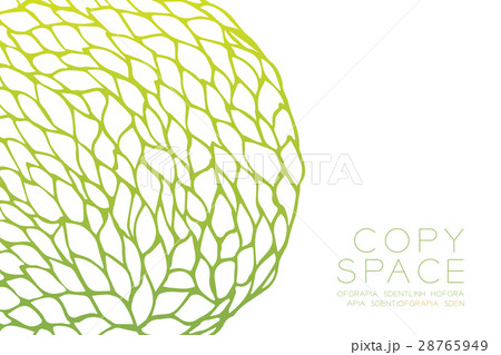 Petals flower pattern designのイラスト素材 [28765949] - PIXTA