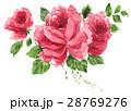 イラスト 花 薔薇のイラスト 28769276