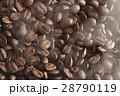 コーヒー 豆 熱いの写真 28790119