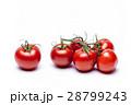 トマト 28799243