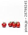 トマト 28799245