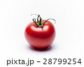 とまと トマト ミニトマトの写真 28799254