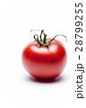 トマト 28799255