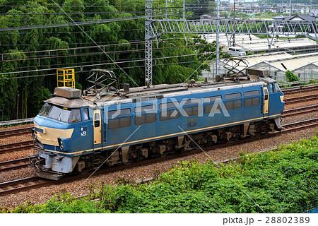 現在は京都鉄道博物館に保存されているEF6635電気機関車 28802389