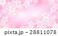 桜 春 花 背景 28811078