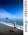 ビーチ 28812809