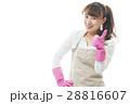 家事 ジャパニーズ 日本人の写真 28816607