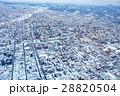 札幌 雪景色 札幌市の写真 28820504