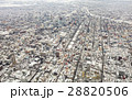 雪 札幌 札幌市の写真 28820506