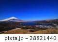 鉄砲木ノ頭(明神山)からの山中湖と冬景色の青空富士山 28821440