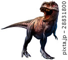 Tyrannosaurus  28831800