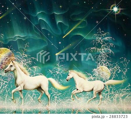 白馬の森 28833723