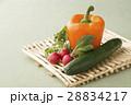 野菜 パプリカ キュウリの写真 28834217