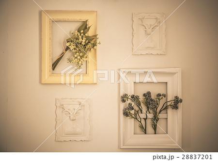 flower in the frame.の写真素材 [28837201] - PIXTA