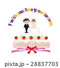 ウエディング ケーキ 結婚のイラスト 28837703