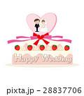 ウエディング ケーキ 結婚のイラスト 28837706