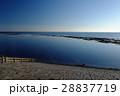 海 青空 空の写真 28837719