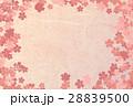 桜 花 春のイラスト 28839500