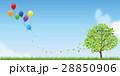 新緑(若葉) 28850906
