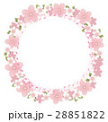 ピンク 花 桜のイラスト 28851822