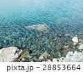 テカポ湖の水辺1 28853664