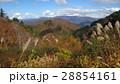 紅葉と山 / The autumn leaves and the mountains 28854161