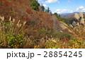 紅葉と山 / The autumn leaves and the mountains 28854245