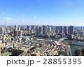 築地市場 築地 汐留の写真 28855395