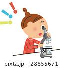 顕微鏡を覗く子供 28855671