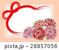 カーネーションカード(オレンジ)2 28857056
